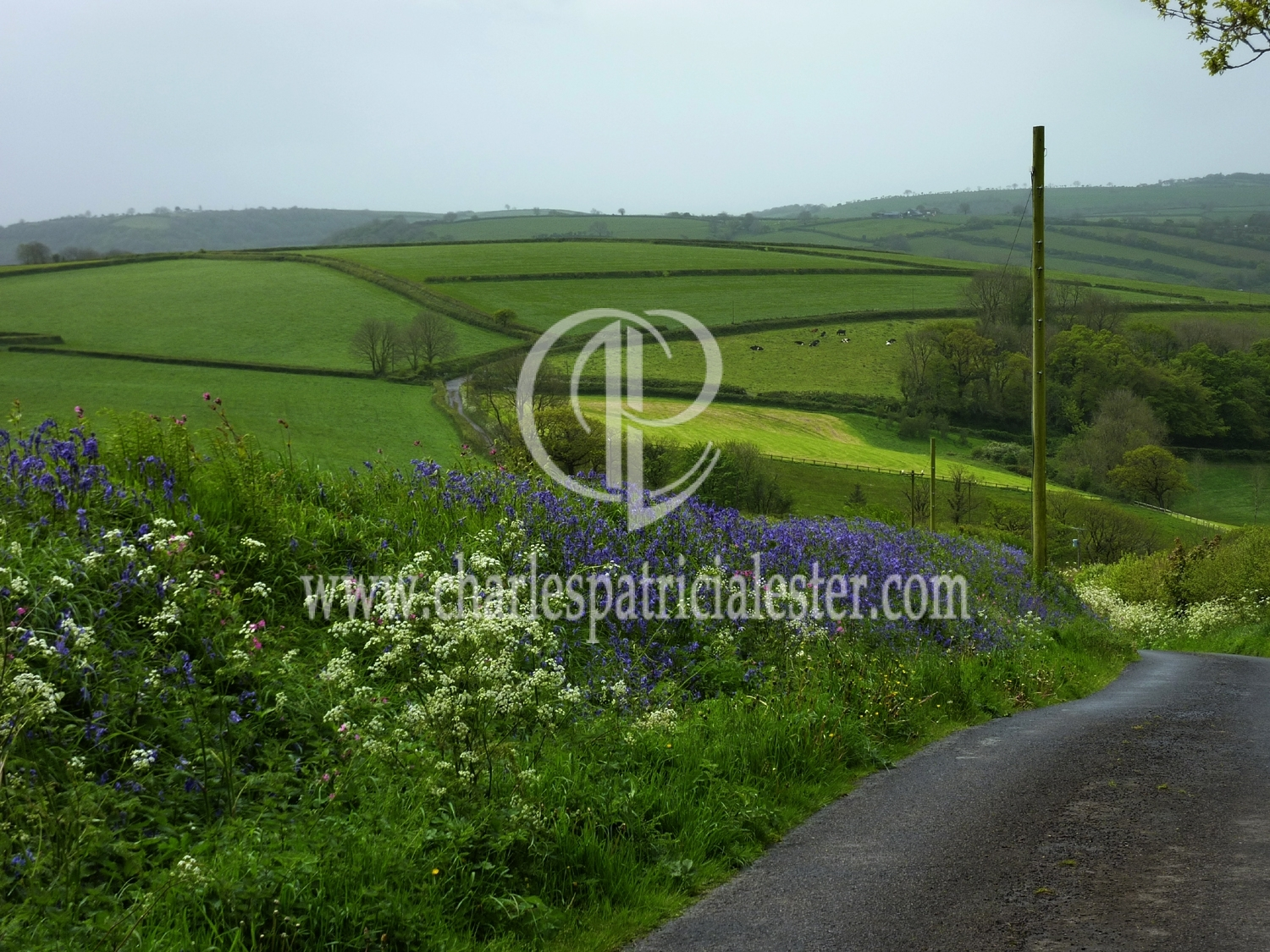 Lanes near Fernhill - Dylan Thomas country inspirations